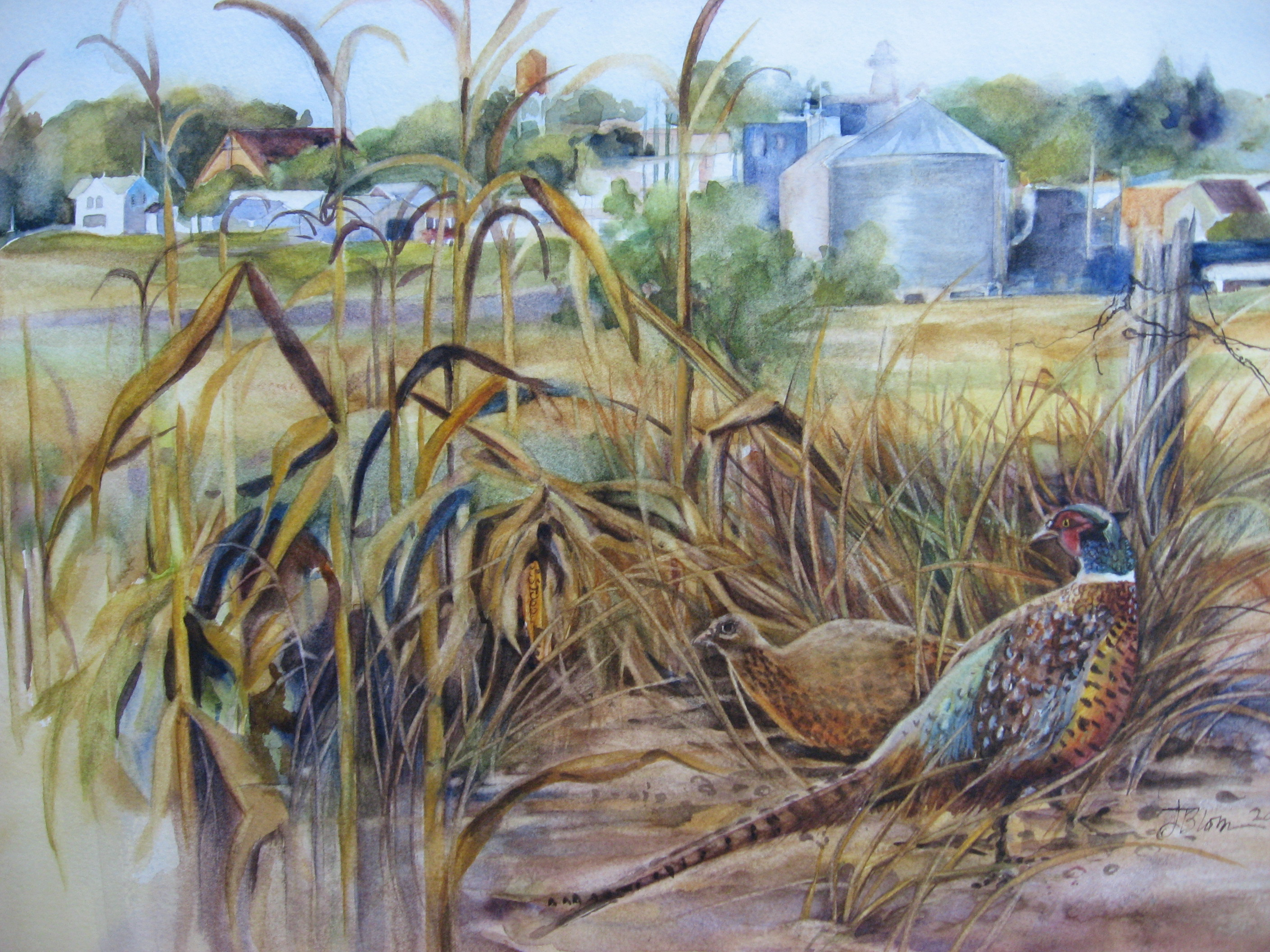 Watercolor pheasant